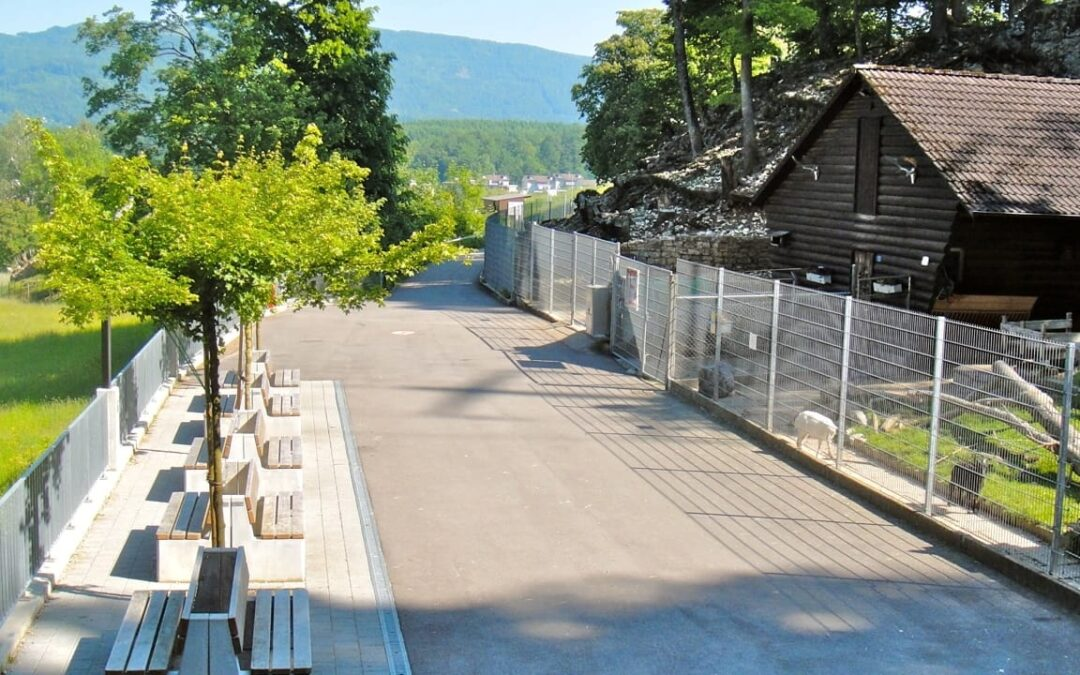 Aargau Solothurn – Wildpark Mühletäli braucht erneut Geld – News – SRF