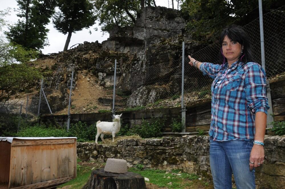 Steinschlag droht, weil Olten das Geld fehlt!: Jetzt sind sogar die Tiere im Mühletäli in Gefahr