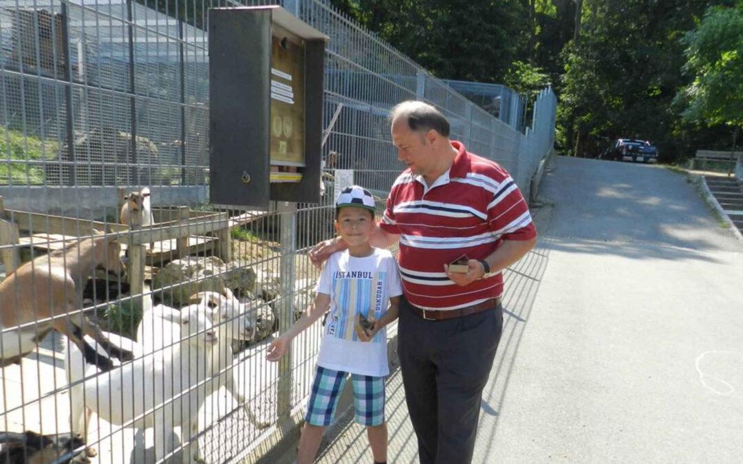 Sommer mit den Tieren im «Mühletäli» – kühles Wasser gibts aus der eigenen Quelle – Niederamt – Solothurn – Solothurner Zeitung
